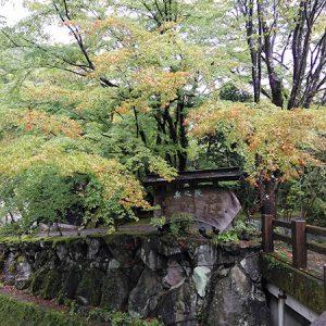 秋の九州温泉めぐり2 黒川温泉が大人気の理由とは!?【黒川温泉 湯めぐり】