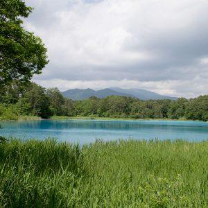 まるで絵の具を溶かしたように青く輝く沼!五色沼自然探勝路を散策