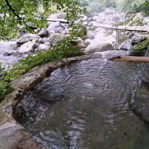 野味あふれる野天風呂に、足元湧出の巌風呂【二岐温泉・柏屋旅館】