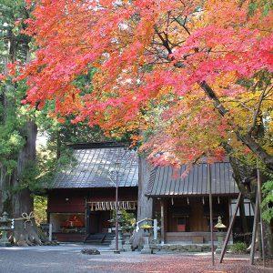 北口本宮冨士浅間神社の紅葉と、神様の素敵なおもてなし