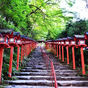 神社仏閣などで体験した、不思議な話4選