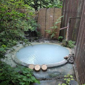 諏訪大社四社巡りと、自然に包まれた極上の白い濁り湯【山水観湯川荘】